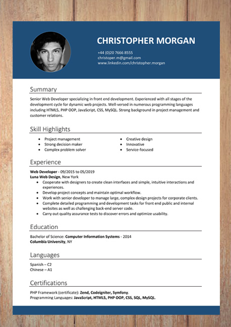 CV   Resume Templates Examples